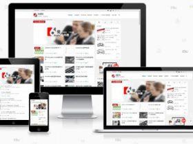 最新WordPress知更鸟Begin ITS长期更新版